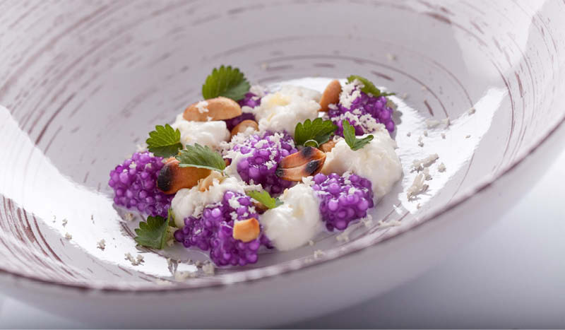 Gourmet evolution cucina con le stelle 39 all 39 accademia del - Cucina evolution ricette ...