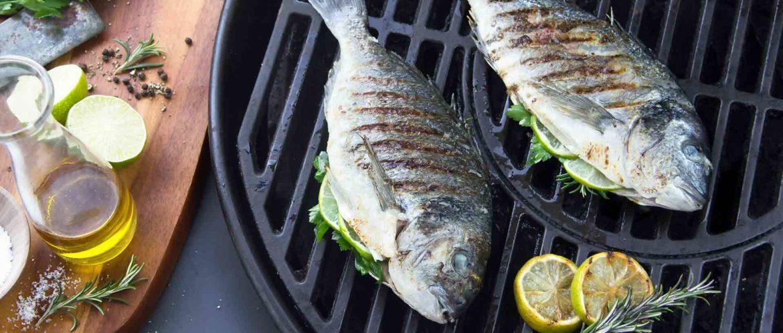 Grigliate, ecco che pesci pigliare
