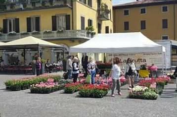 """Il 25 aprile c'è """"Lovere in fiore"""", il Comune invita residenti e commercianti a colorare il borgo"""