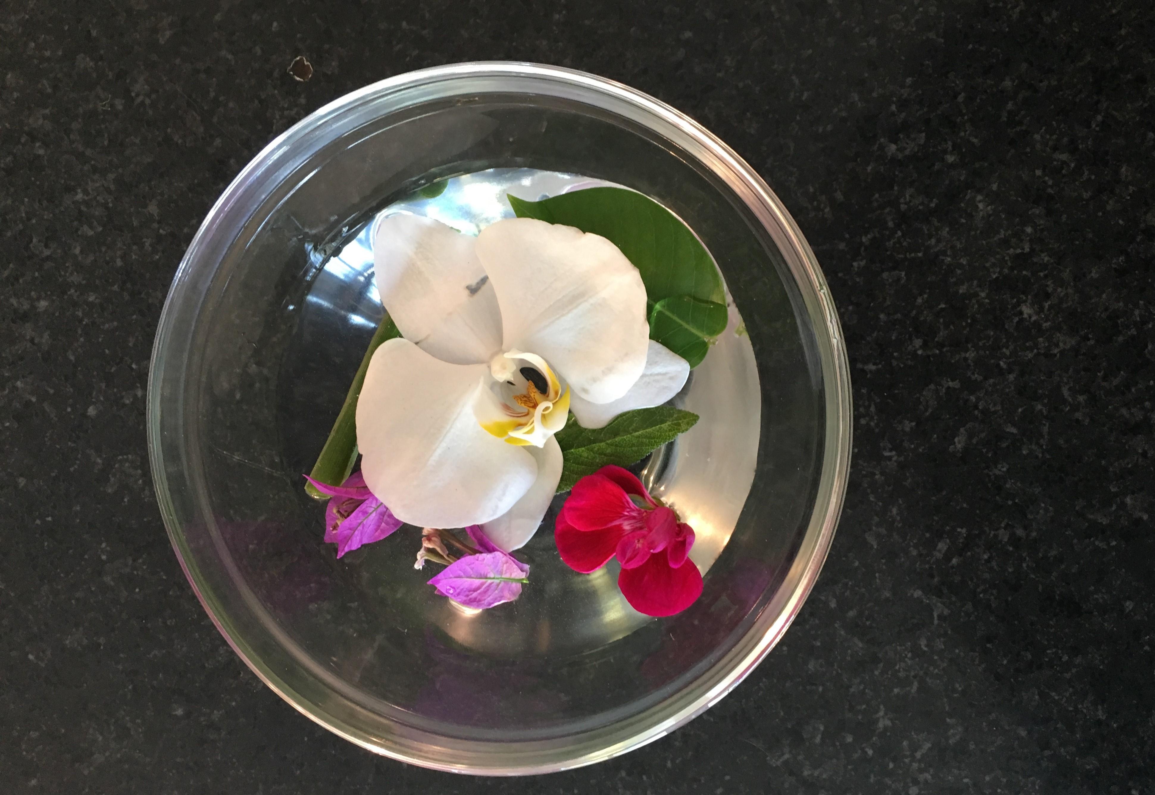 Idee Per Vasi Da Fiori fiori in tavola: consigli e idee per i ristoratori | la rassegna