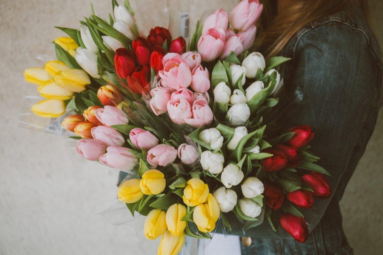 Per le feste tulipani bianchi e amaryllis