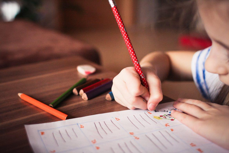 Libri per la scuola primaria: le nuove procedure
