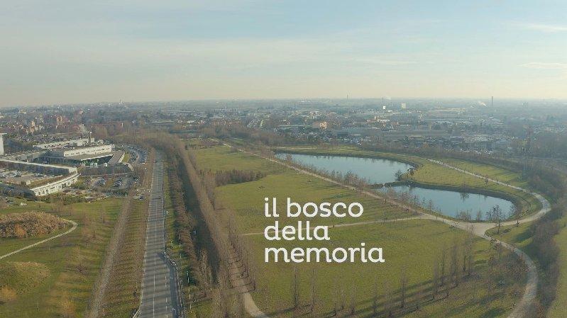 Bosco della Memoria al Parco della Trucca: raccolti 23 mila euro per non dimenticare